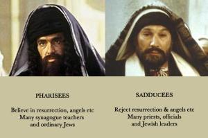 Pharisee+SadduceeDetails